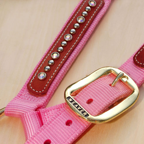 Halfter Swarovski - Detail rosa
